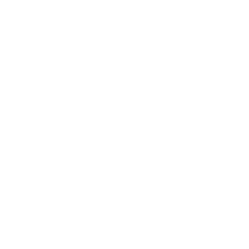 Diversely Logo